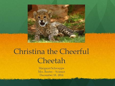 Christina the Cheerful Cheetah Margaret Schweppe Mrs. Baxter – Science December 18, 2014.