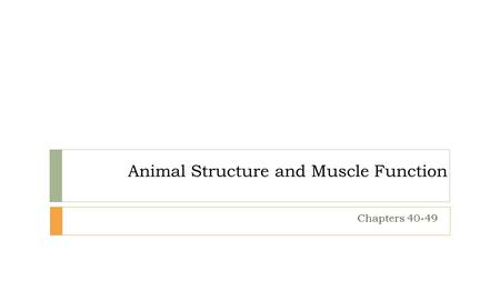 Animal Structure and Muscle Function