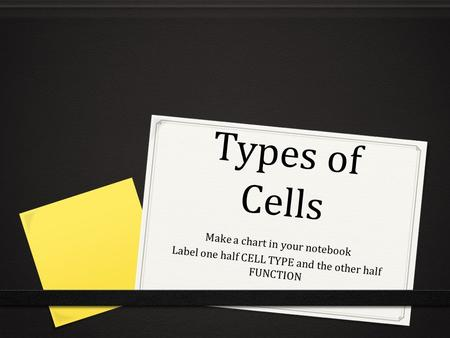 Types of Cells Make a chart in your notebook Label one half CELL TYPE and the other half FUNCTION.