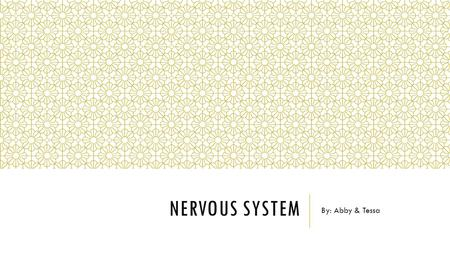 NERVOUS SYSTEM By: Abby & Tessa. TERMS Brain- encephal/o- coordinates all activities of the body and receives and transmits messages throughout the body.
