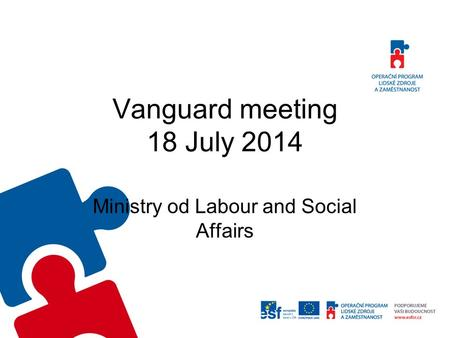 Vanguard meeting 18 July 2014 Ministry od Labour and Social Affairs.
