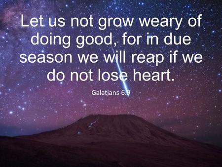 Let us not grow weary of doing good, for in due season we will reap if we do not lose heart. Galatians 6.9.