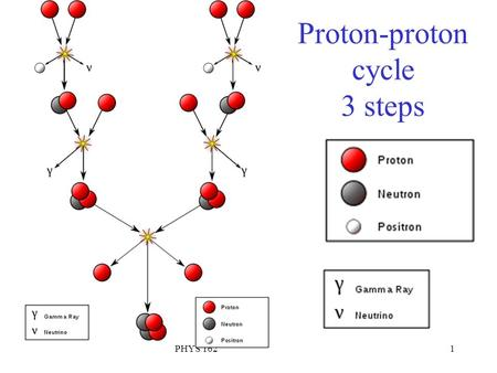 PHYS 1621 Proton-proton cycle 3 steps. PHYS 1622 Layers of the Sun Mostly Hydrogen with about 25% Helium. Small amounts of heavier elements Gas described.
