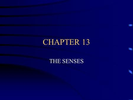 CHAPTER 13 THE SENSES RECEPTORS RECEIVE INFORMATION AND SEND IT TO THE BRAIN FOR PROCESSING.