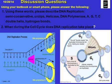 Discussion Questions Discussion Questions 10/28/14 1. Using these words, please describe DNA Replication: semi-conservative, unzips, Helicase, DNA Polymerase,