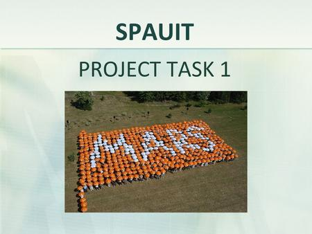 SPAUIT PROJECT TASK 1. Chosen company: Basic information Sector: FMCG (Fast Moving Consumer Goods Location: Headquarters - McLean, Virginia, USA European.