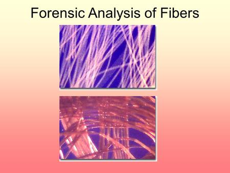Forensic Analysis of Fibers. Types of Fibers Natural – fibers that come from plants or animals Man-made – fibers that come from natural or synthetic polymers.