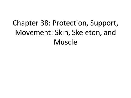 Chapter 38: Protection, Support, Movement: Skin, Skeleton, and Muscle.
