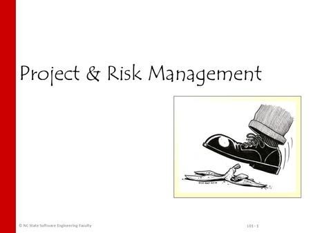 Project & Risk Management