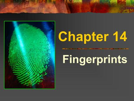 Chapter 14 Fingerprints. Background Info. Bertillon's system of anthropometry was the 1 st criminal identification method It was used for 20 years, but.