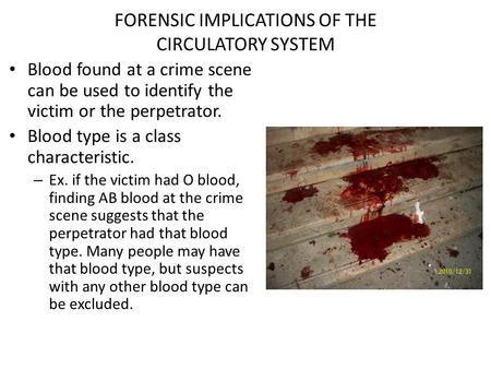 FORENSIC IMPLICATIONS OF THE CIRCULATORY SYSTEM Blood found at a crime scene can be used to identify the victim or the perpetrator. Blood type is a class.