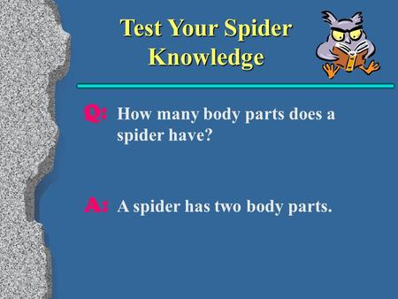 Test Your Spider Knowledge Q: A: How many body parts does a spider have? A spider has two body parts.