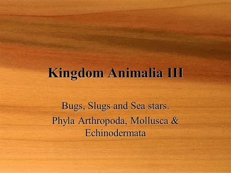 Kingdom Animalia III Bugs, Slugs and Sea stars. Phyla Arthropoda, Mollusca & Echinodermata Bugs, Slugs and Sea stars. Phyla Arthropoda, Mollusca & Echinodermata.
