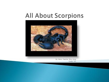 By: Harry Teacher Miss Sorg Grade 5th. Scorpions are the cousins of the Spider. The female can birth to 3 to 100 Scorplings.