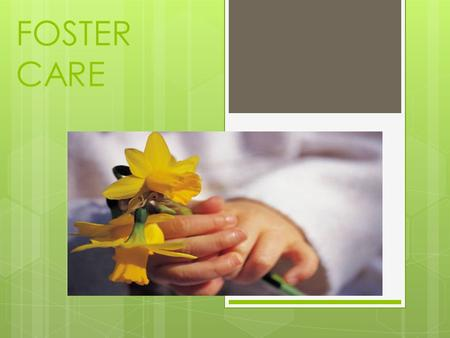 FOSTER CARE. Who are the children?  The Child and Family Services Division (CFSD) of the state Department of Public Health and Human Services place children.