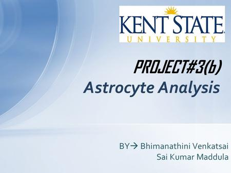 PROJECT#3(b) Astrocyte Analysis