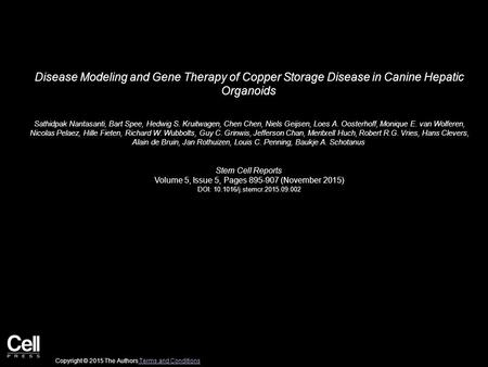 Disease Modeling and Gene Therapy of Copper Storage Disease in Canine Hepatic Organoids Sathidpak Nantasanti, Bart Spee, Hedwig S. Kruitwagen, Chen Chen,
