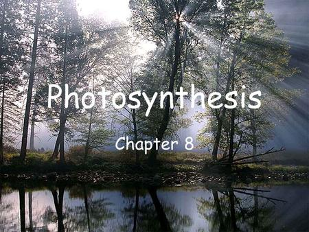 Photosynthesis Chapter 8. Energy and Life Section 8-1.