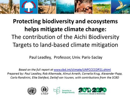 Protecting biodiversity and ecosystems helps mitigate climate change: The contribution of the Aichi Biodiversity Targets to land-based climate mitigation.