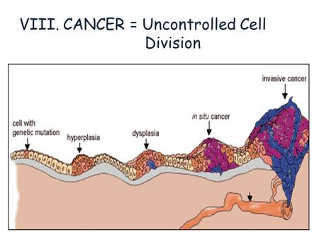 VIII. CANCER = Uncontrolled Cell Division. Celebs with Cancer.