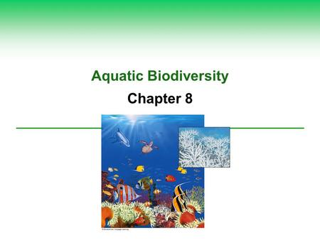 Aquatic Biodiversity Chapter 8. Core Case Study: Why Should We Care about Coral Reefs?  Biodiversity  Formation  Important ecological and economic.
