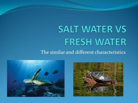 The similar and different characteristics. What's the difference?