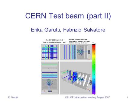 E. GaruttiCALICE collaboration meeting, Prague 20071 CERN Test beam (part II) Erika Garutti, Fabrizio Salvatore.