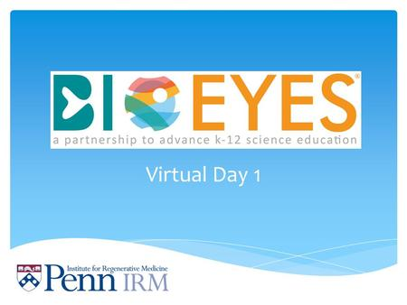 Virtual Day 1. Hello scientists, Welcome to BioEYES! We are bringing you an exciting experiment. For the next week your goal will be to learn all you.