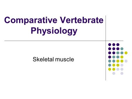 Comparative Vertebrate Physiology Skeletal muscle.