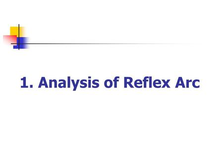 1. Analysis of Reflex Arc. The neural pathway involved in accomplishing reflex activity is known as a reflex arc, which typically includes the five following.