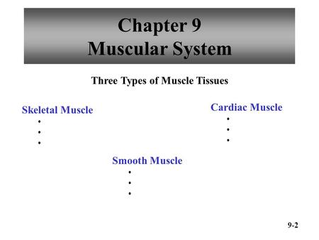 Chapter 9 Muscular System 9-2 Three Types of Muscle Tissues Skeletal Muscle Smooth Muscle Cardiac Muscle.