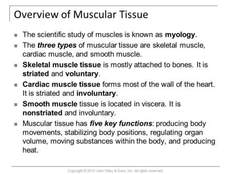 Overview of Muscular Tissue The scientific study of muscles is known as myology. The three types of muscular tissue are skeletal muscle, cardiac muscle,