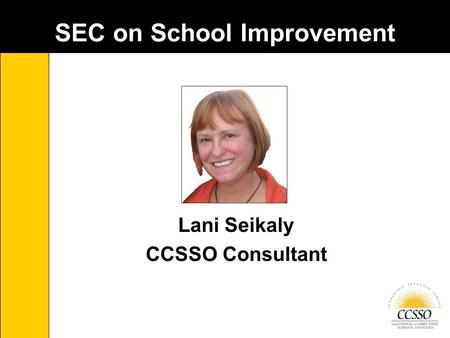 SEC on School Improvement Lani Seikaly CCSSO Consultant.
