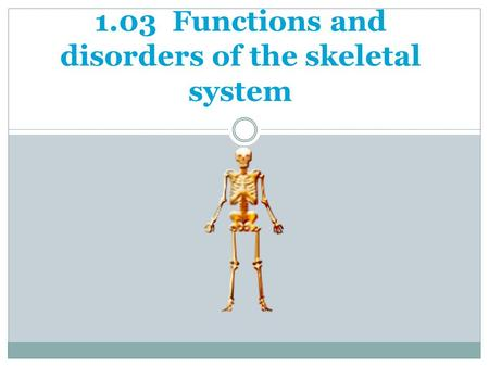 1.03 Functions and disorders of the skeletal system