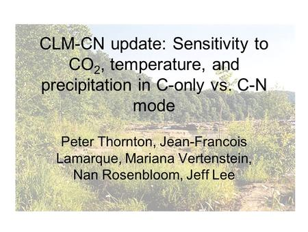 CLM-CN update: Sensitivity to CO 2, temperature, and precipitation in C-only vs. C-N mode Peter Thornton, Jean-Francois Lamarque, Mariana Vertenstein,
