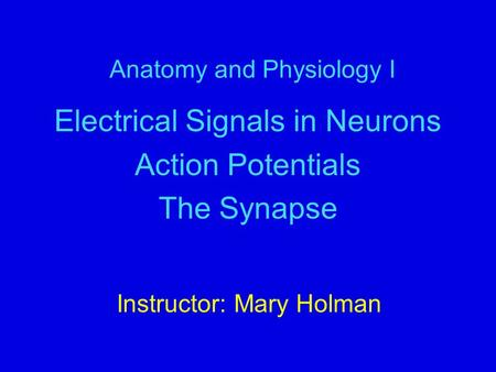 Anatomy and Physiology I Electrical Signals in Neurons Action Potentials The Synapse Instructor: Mary Holman.