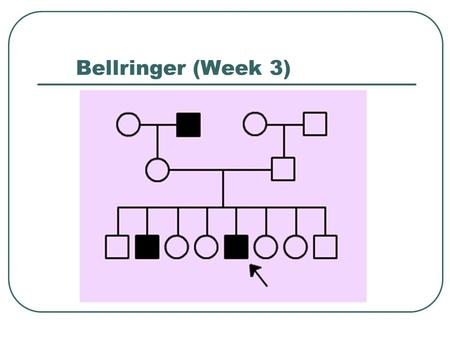 Bellringer (Week 3). Bellringer cont. Section 12-2 When Heredity Follows Different Rules.