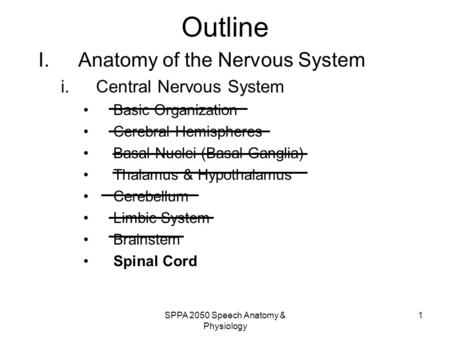SPPA 2050 Speech <strong>Anatomy</strong> & <strong>Physiology</strong> 1 Outline I.<strong>Anatomy</strong> of the Nervous <strong>System</strong> i.Central Nervous <strong>System</strong> Basic Organization Cerebral Hemispheres Basal.