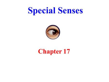 Special Senses Chapter 17. The Special Senses Smell, taste, vision, hearing and equilibrium Housed in complex sensory organs Ophthalmology is science.
