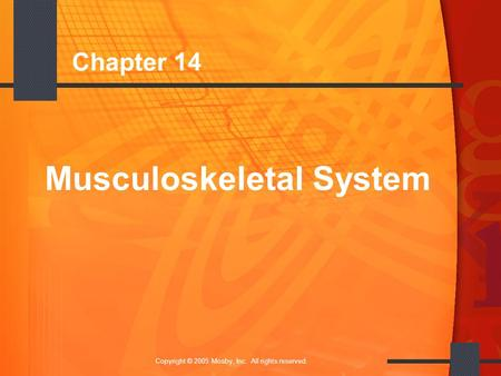 1 Copyright © 2005 Mosby, Inc. All rights reserved. Chapter 14 Musculoskeletal System.