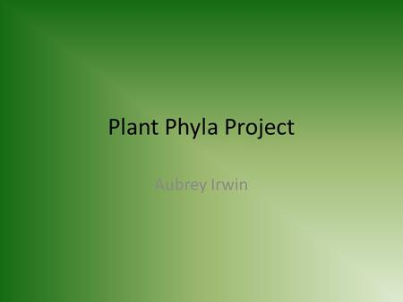 Plant Phyla Project Aubrey Irwin. Bryophyta Common Name: Mosses Major Group: Seedless Nonvascular Characteristics: Grow close to ground, absorb water.