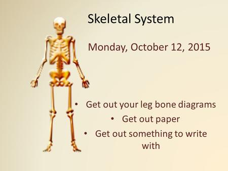 Skeletal System Monday, October 12, 2015