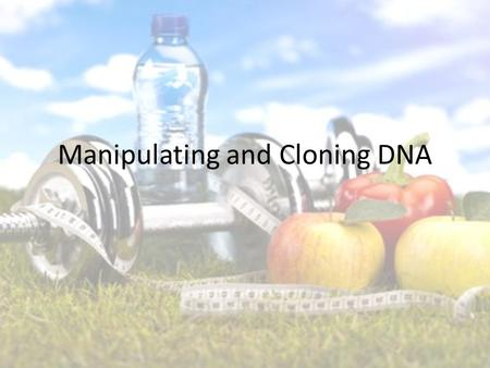 Manipulating and Cloning DNA. Being Healthy Type 1 diabetes Type 2 diabetes How can you help these individuals?