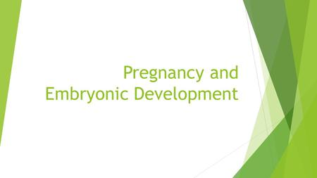 Pregnancy and Embryonic Development