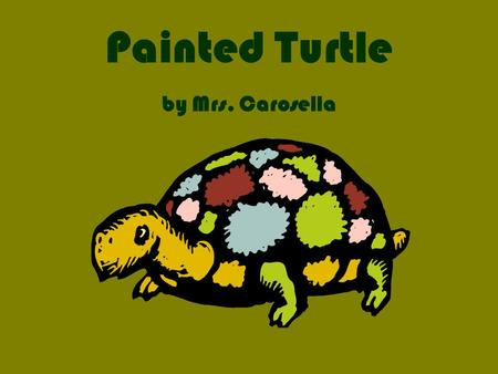 Painted Turtle by Mrs. Carosella. Painted turtle Everyone smiles when they see a painted turtle. In this report, you will find out where painted turtles.