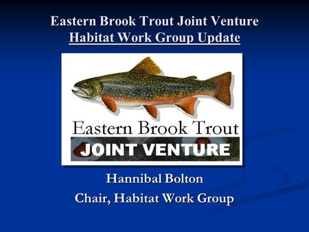 Eastern Brook Trout Joint Venture Habitat Work Group Update Hannibal Bolton Chair, Habitat Work Group.