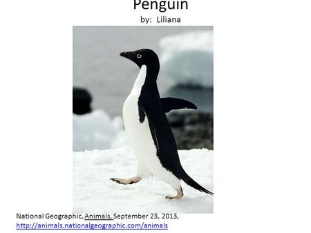 Penguin by: Liliana National Geographic, Animals, September 23, 2013,