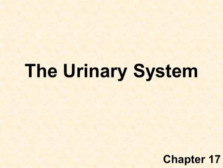 The Urinary System Chapter 17. Introduction The urinary system consists of –two kidneys that filter the blood, –two ureters, –a urinary bladder, and –a.