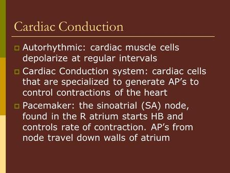Cardiac Conduction  Autorhythmic: cardiac muscle cells depolarize at regular intervals  Cardiac Conduction system: cardiac cells that are specialized.