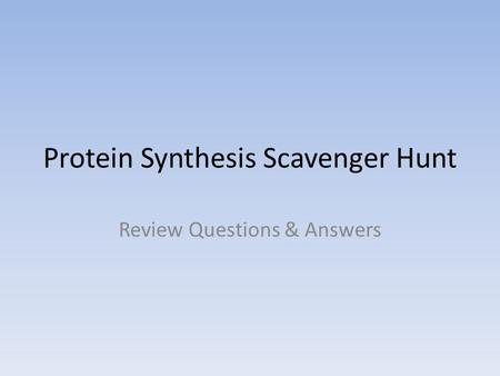 Protein Synthesis Scavenger Hunt Review Questions & Answers.